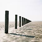 Posts at Brean by 35-millimetre