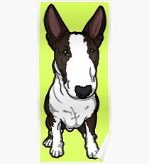 Frank The English Bull Terrier Poster