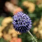 Blue Orb by FishAndFridays