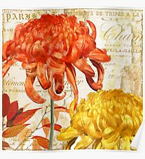 Chrysanthèmes I Poster