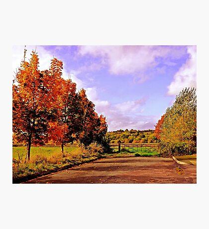 Changing Seasons. Photographic Print