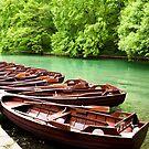 Row Boats by Rae Tucker