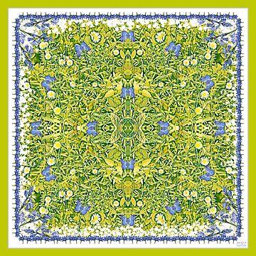 Daisy Daze - Kaleidoscope by JacquiTaylor