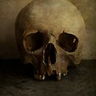 Male skull in retro style by JBlaminsky