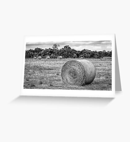 Hay Bales at Yan Yean Greeting Card