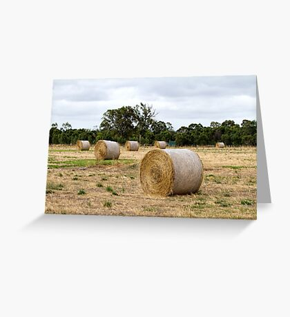 Hay Bales at Yan Yean 2 Greeting Card