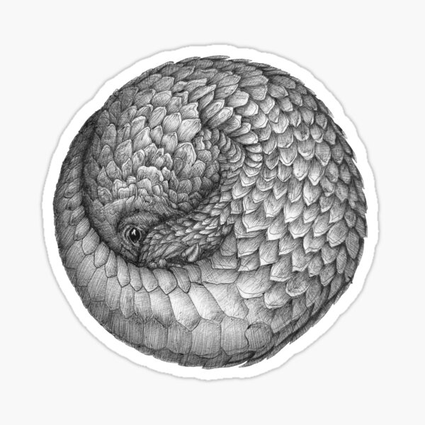 The Infinite Pangolin Sticker