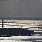 Verrazano Bridge, Hudson River, New York City by lenspiro