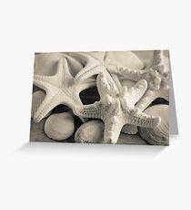 White Starfish Black and White Greeting Card