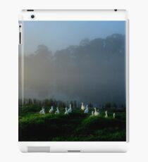 Early morning stroll  (please view larger) iPad Case/Skin