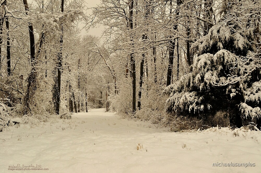 Southern Illinois Winter Scene 3_ Dec 2012 by michaelasamples