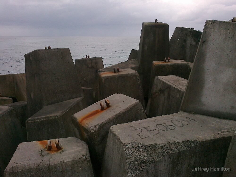 Sculpture by the Sea by Jeffrey Hamilton