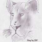 Lioness in pencil by Riekert Maritz (Krog)