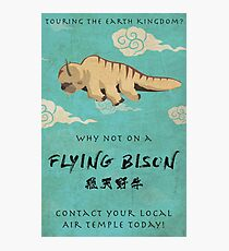 Vintage Flying Bison Travel Poster Photographic Print