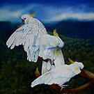 Cockatoo Lookout  Blue Mountains NSW Australia by sandysartstudio