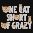 One Cat Short Of Crazy by wytrab8