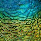 Peacock Duvet (full feathers) by BadBehaviour