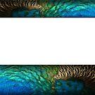 Peacock Duvet (feather panels) by BadBehaviour