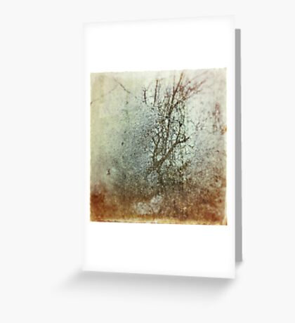 Winter in My Heart Greeting Card