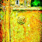 The rusty and peeling gate by Silvia Ganora