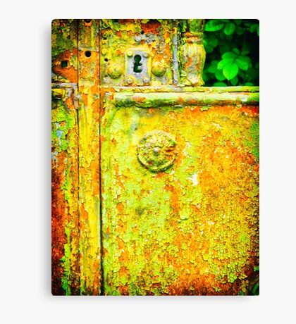 The rusty and peeling gate Canvas Print