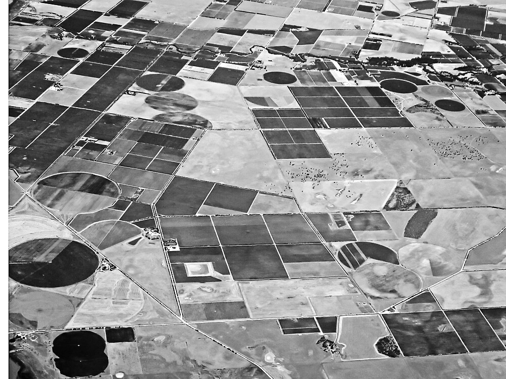 Crop Circles and Squares by TonyCrehan