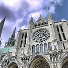 Chartres Cathedral  (1) by Larry Lingard-Davis