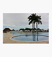Palm trees by the pool Photographic Print