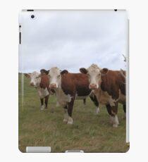 Cows In A Field iPad Case/Skin
