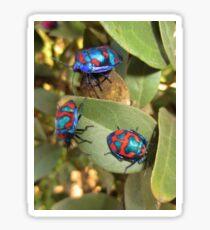 Living jewels Sticker