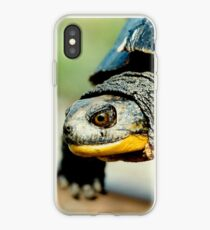 Mr turtle..how many licks does it take to get to the center of a toosie pop? iPhone Case