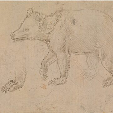 A Bear Walking (DA Vinci) by Zzart