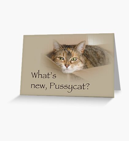 What's New Pussycat - Lily the Cat Greeting Card