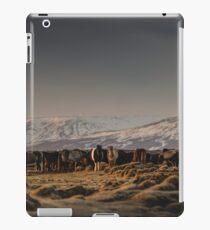 Icelandic Horses I iPad Case/Skin