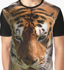 Close-up Portrait of a Striped Royal Bengal Tiger of India Graphic T-Shirt