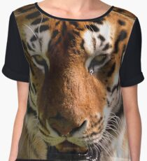 Close-up Portrait of a Striped Royal Bengal Tiger of India Women's Chiffon Top