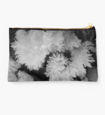 Overnight Frost Studio Pouch