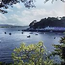 The pretty town of Portree, Isle of Skye by Kevin Allan
