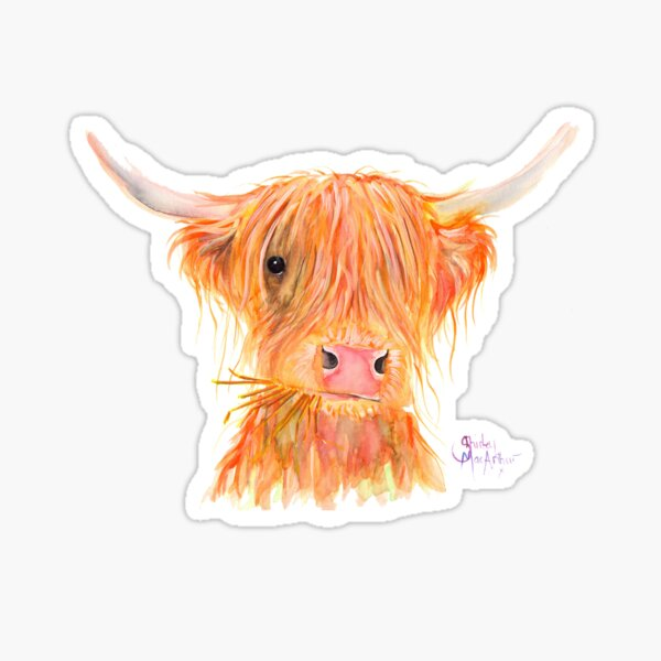 SCOTTISH HIGHLAND COW 'FERGUS' By Shirley MacArthur Sticker