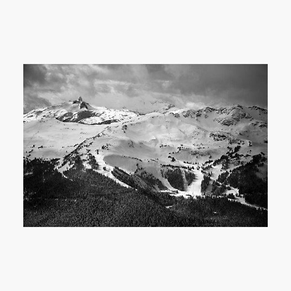 Whistler Photographic Print