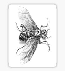 Flying Insect Sticker