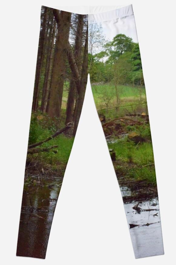 Wood #6 by John Glynn ARPS