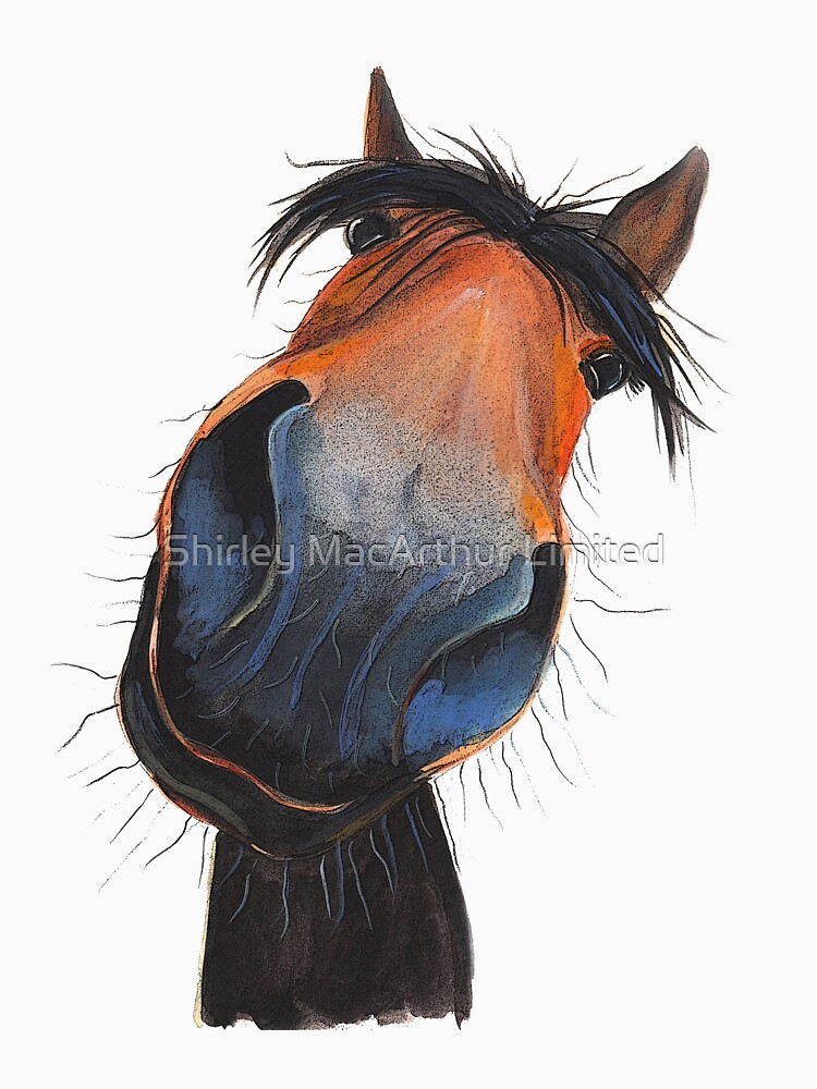 HORSE PRiNT 'HAPPY DAVE' BY SHIRLEY MACARTHUR by ShirleyMacA