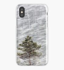 12.1.2017: Pine Trees in Blizzard II iPhone Case