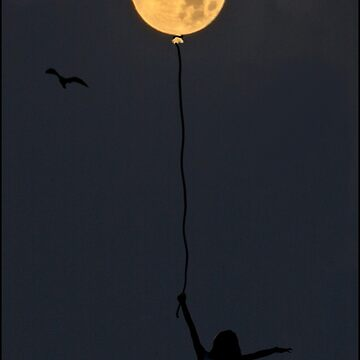 Catch the Moon by trish1004