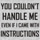 YOU COULDN'T HANDLE ME EVEN IF I CAME WITH INSTRUCTIONS by Divertions
