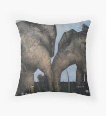 Wacky Birds on Baby Elephants Throw Pillow