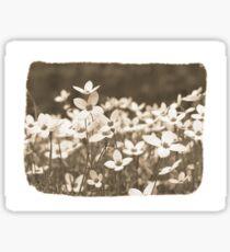 Vintage Flower Sticker Sticker