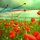 Remembrance by shalisa