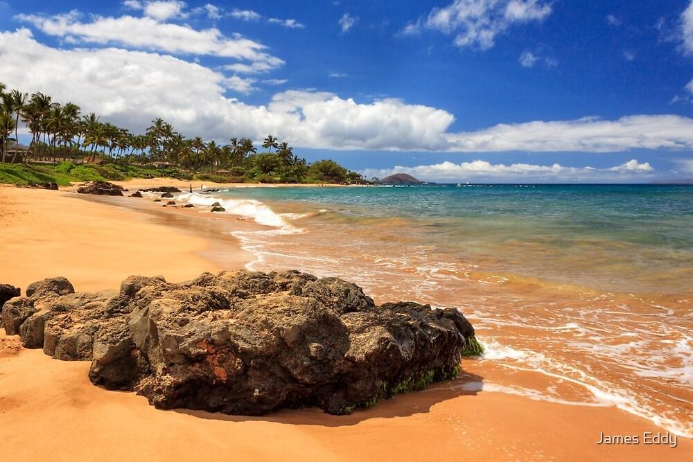 Mokapu Beach Maui by James Eddy